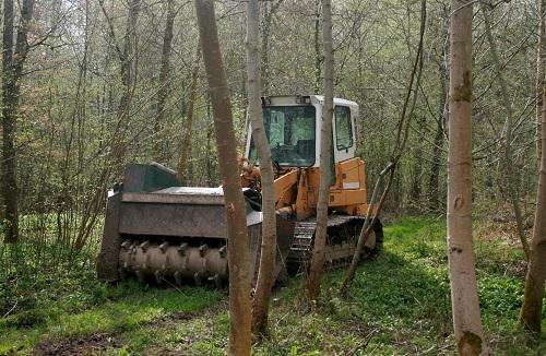 Beispiel für eine Forstmaßnahme: Maschineneinsatz