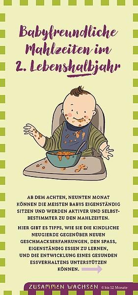 """Flyer """"Babyfreundliche Mahlzeiten im 2.Lebenshalbjahr"""" (6-12 Monate)"""