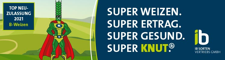 SUPER WEIZEN. SUPER ERTRAG. SUPER GESUND. SUPER KNUT. Top Neuzulassung 2021! (B-Weizen)