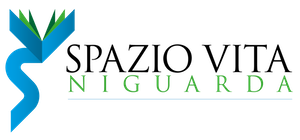 Centro Spazio Vita Niguarda - Questionario sulla formazione e l'inserimento lavorativo