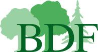 Mitgliederbefragung BDF