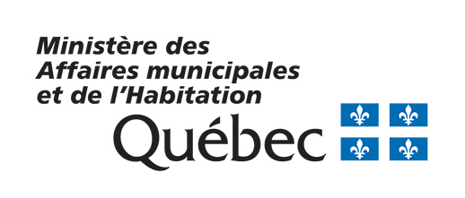 Inscription à la séance d'information: Je me présente aux prochaines élections municipales!