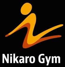 Undersökning för kartläggning av Nikaro