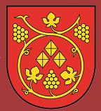 Gemeindebefragung St. Stefan ob Stainz