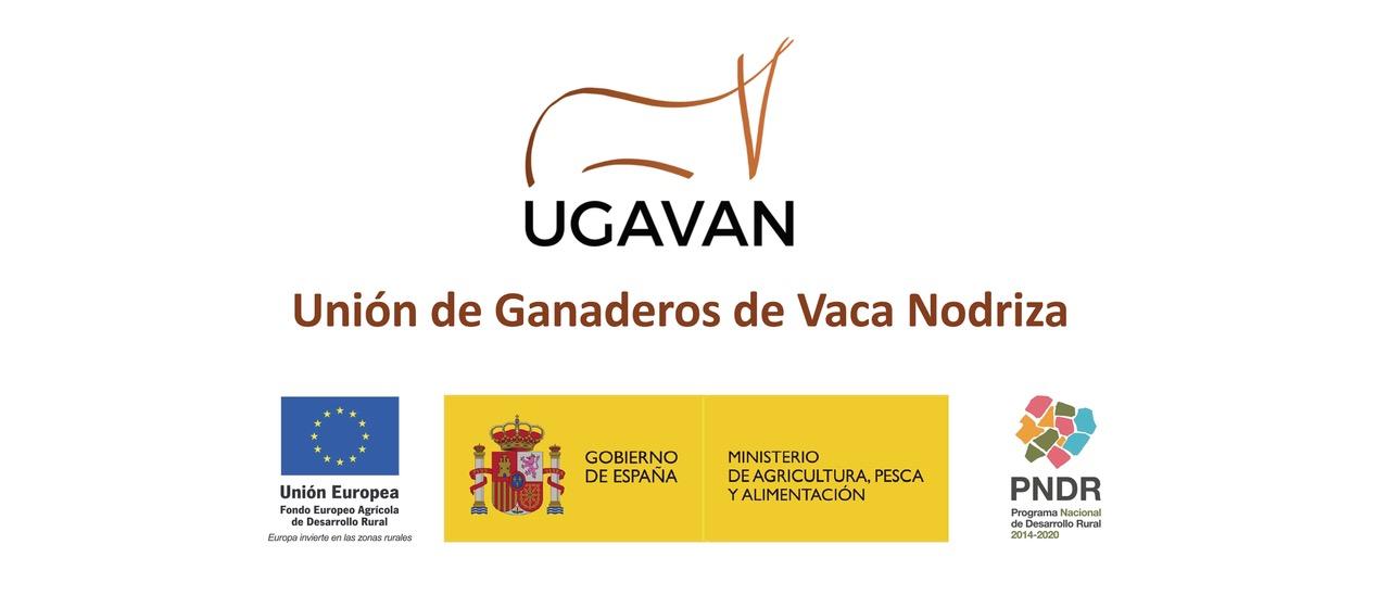 Estudio de la rentabilidad de las explotaciones de vaca nodriza. Grupo Operativo VACUSOS.