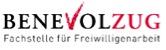 Online-Abstimmung «Prix Zug engagiert» 2017