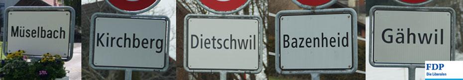 Bevölkerungsumfrage Kirchberg 2016