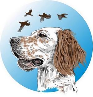 Il benessere  e la gestione del cane da caccia e da prove